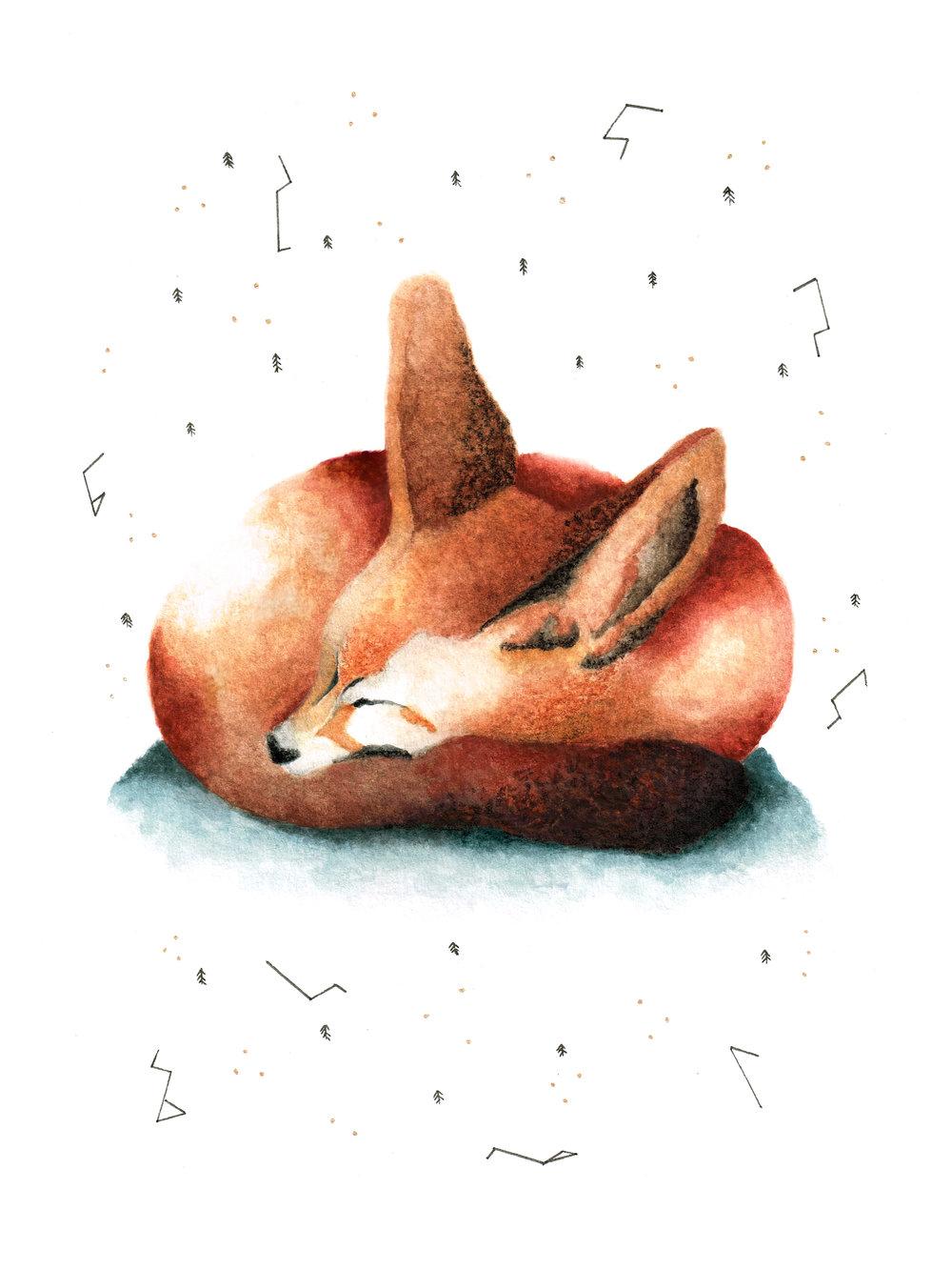 Fennec Fox, 2014