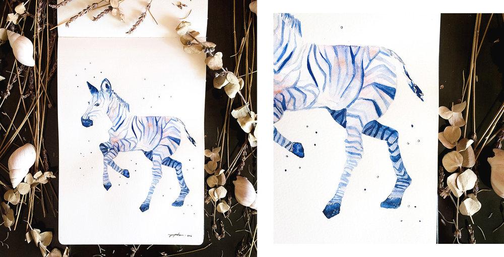 Zebra-v.jpg