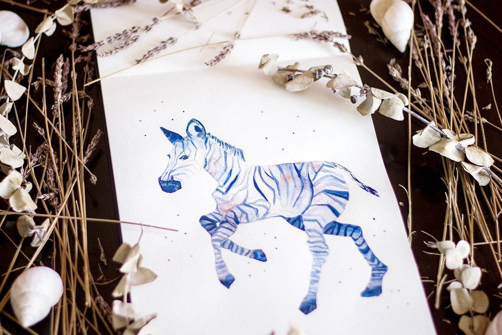 Zebra-vi.jpg