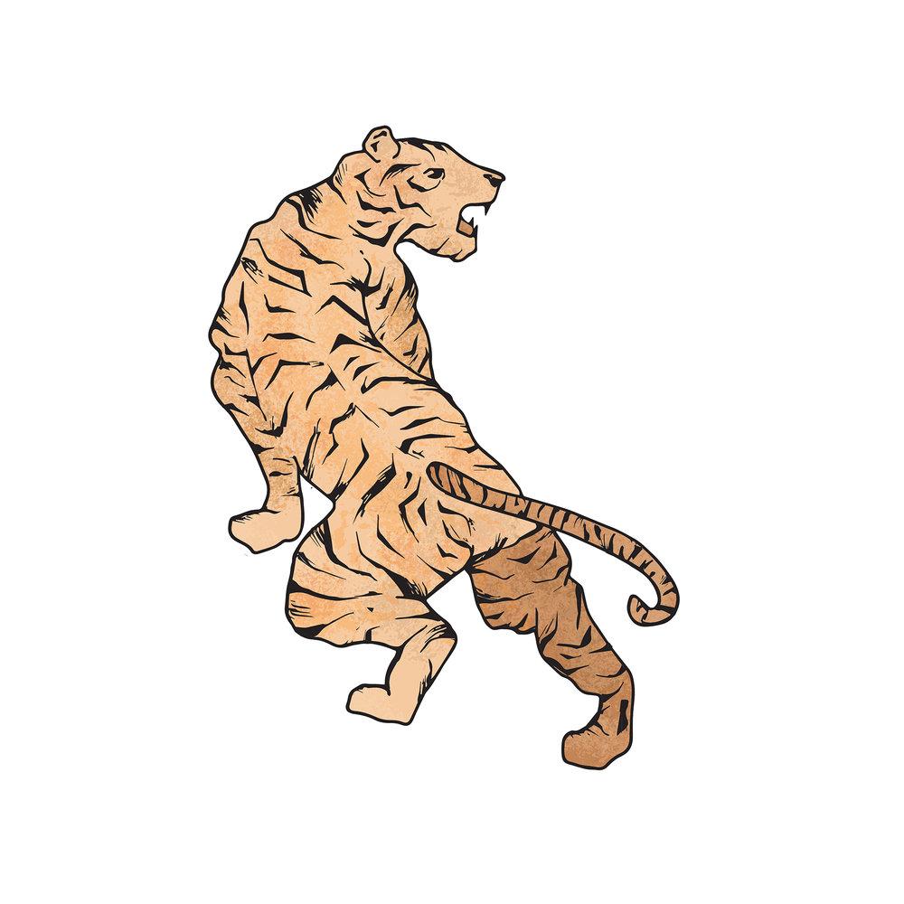 Revised-Tiger-Final.jpg