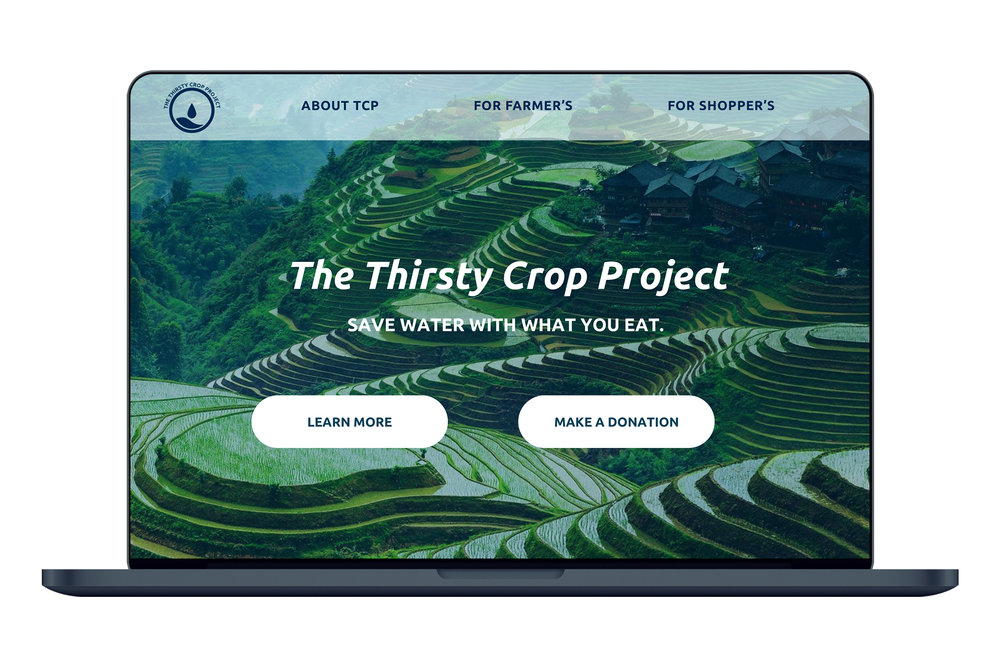 Thirsty Crop Project - Designing a complex system about environmental awareness.