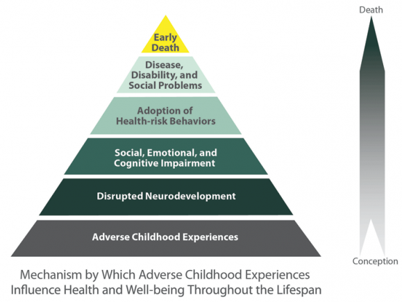 research: ACEs - Research into Adverse Childhood Experiences (ACEs) paints a picture of how early trauma can significantly affect short- and long-term health and can fundamentally damage the function and structure of children's developing brains. There is increasing evidence that resiliency practices help the body and brain heal from these traumas and protect against future damage.Image credit: CDC