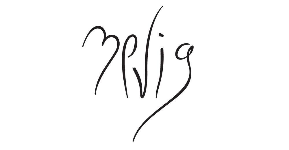 zevi g signature long.jpg
