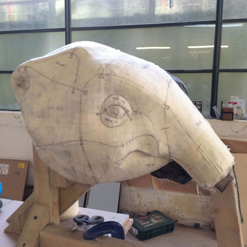 baby-elephant-head-process.jpg
