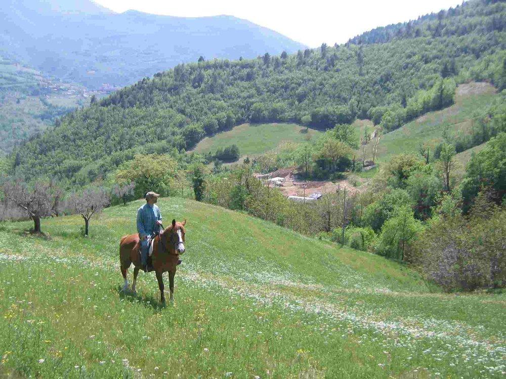 horsebackview.jpg