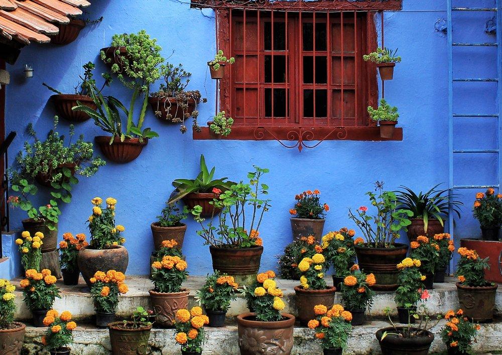 MexicoCity_BlueHouse.jpg