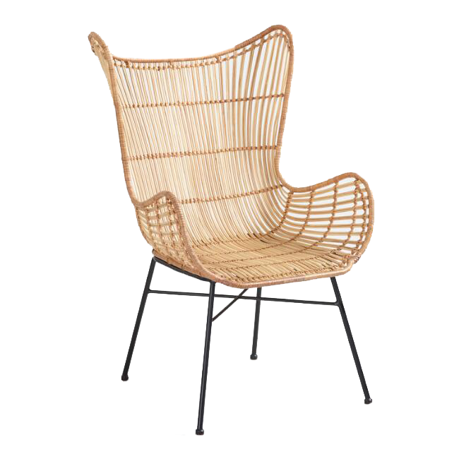 Natural Rattan Willis Wingback Chair / World Market