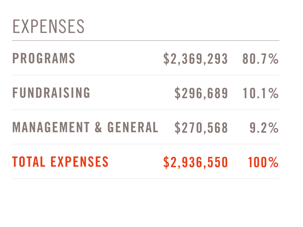 expenses.png