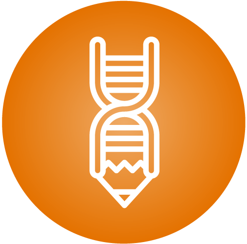 DNA Pencil_Orange.png