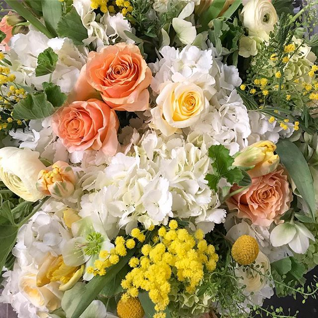 Spring with Mimosa #spring #flowers #flowerpower #elanflowers #flowersofinstagram #flowerstagram #flowergram #todayspretty