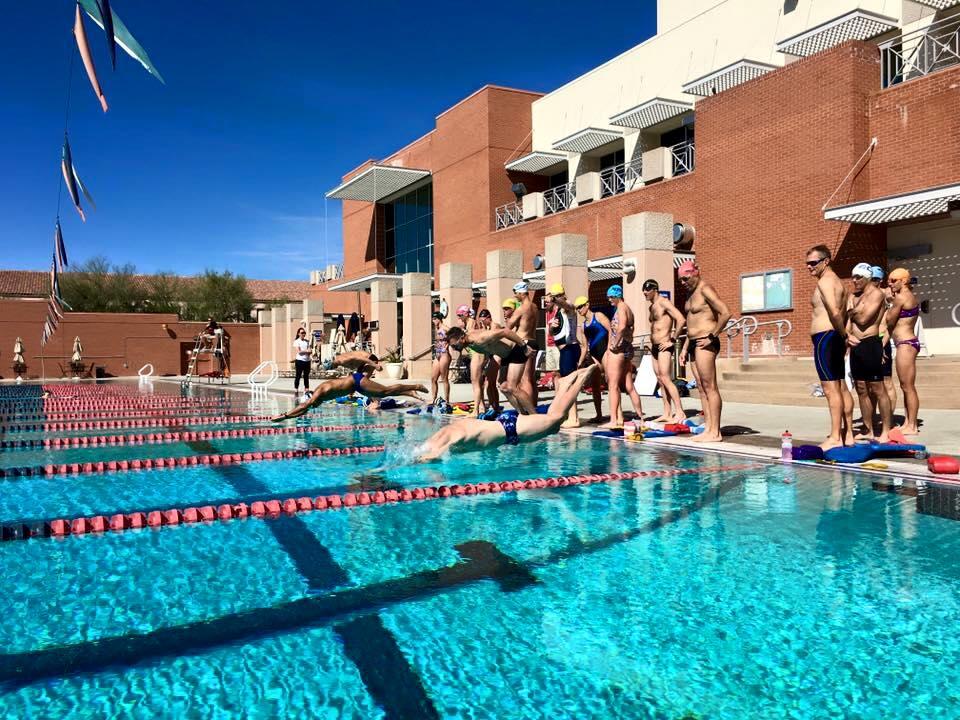 swim dive 2016.jpg
