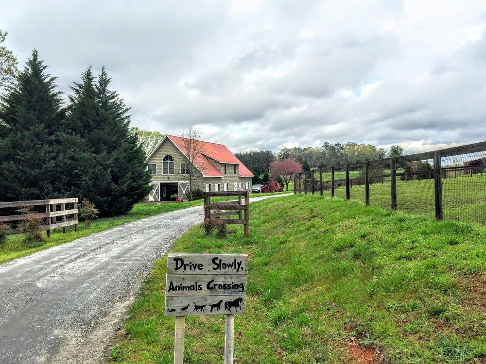 kemper's farm.JPG