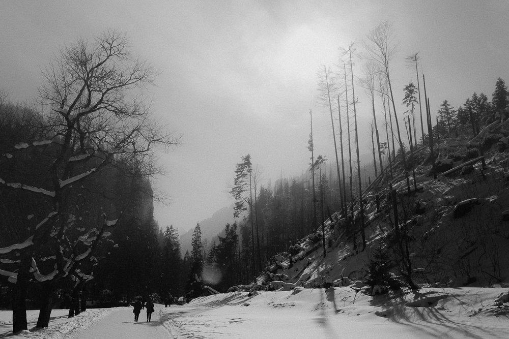 Destination-Wedding-Photographer-couple-in-mountains-1-18.jpg