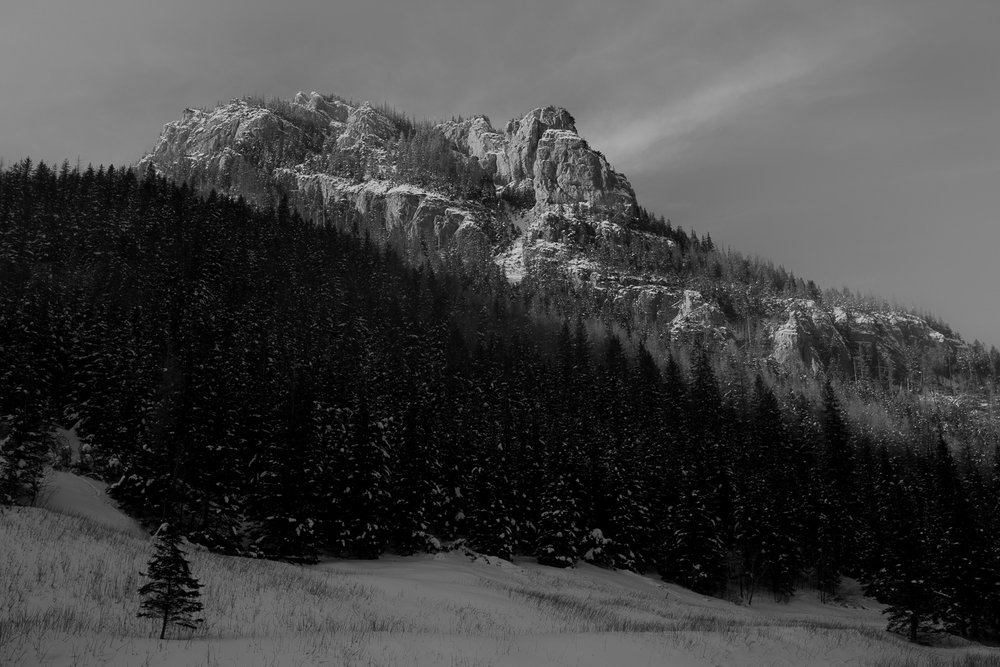 Destination-Wedding-Photographer-couple-in-mountains-1-29.jpg