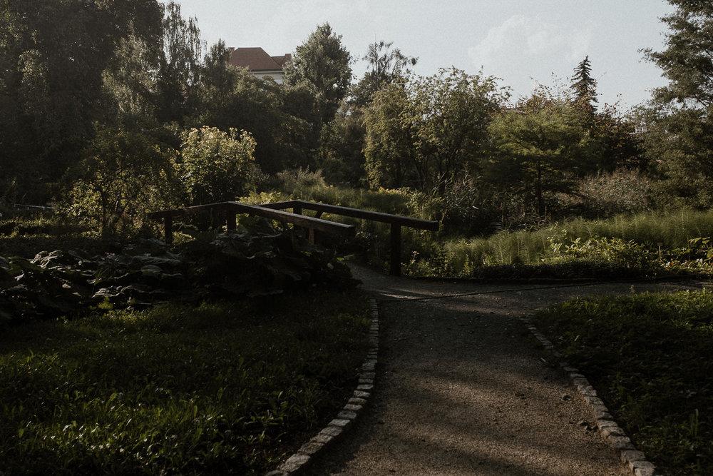 sesja-narzeczenska-w-ogrodzie-botanicznym-w-krakowie-9.jpg