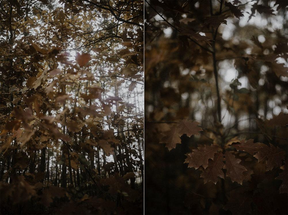 Fotograf+slubny+zawiercie+katowice+slask+77.jpg