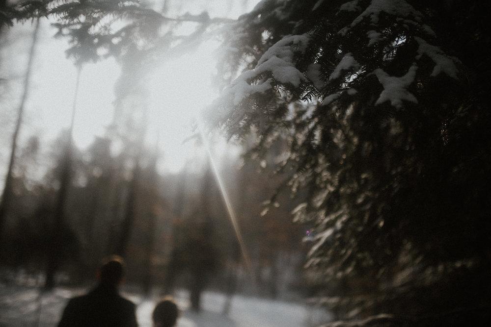 Sesja-slubna-zimowa-w-ojcowskim-parku-narodowym-6.jpg
