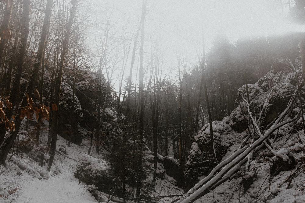 Sesja-slubna-zimowa-w-ojcowskim-parku-narodowym-5.jpg