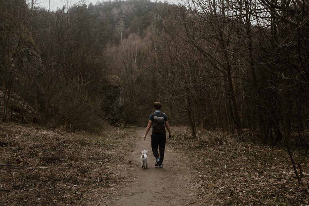 Dolina Kobylańska spacer z psem-14.jpg