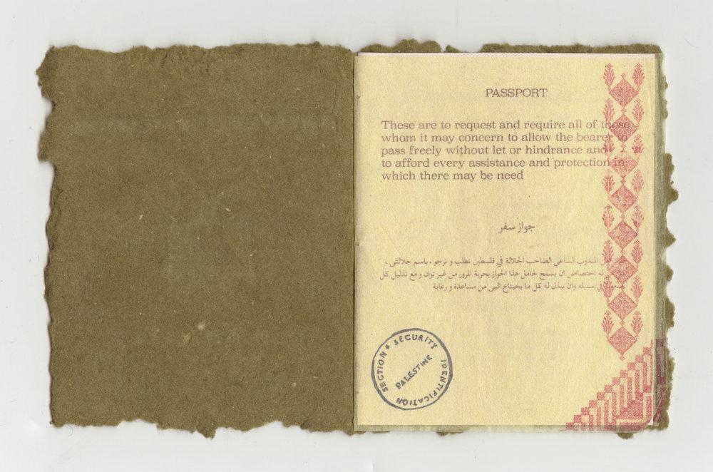 Passport 3.jpg