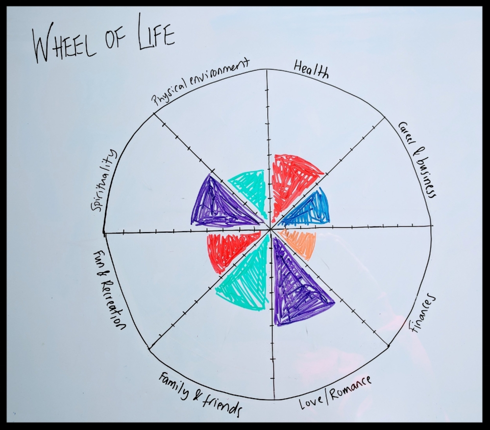 Example of a completed 'Wheel of Life'
