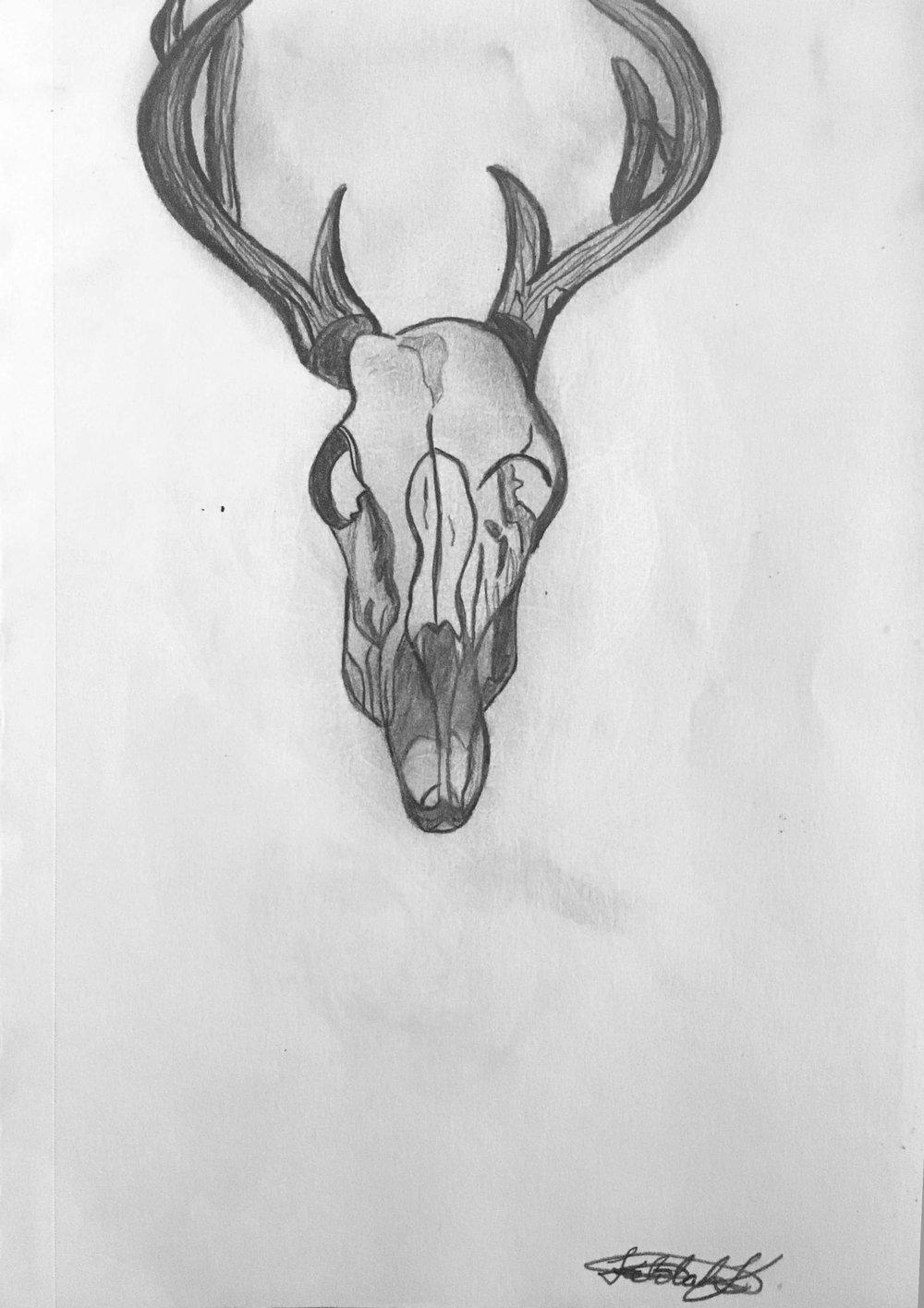 Skeletal Mammal