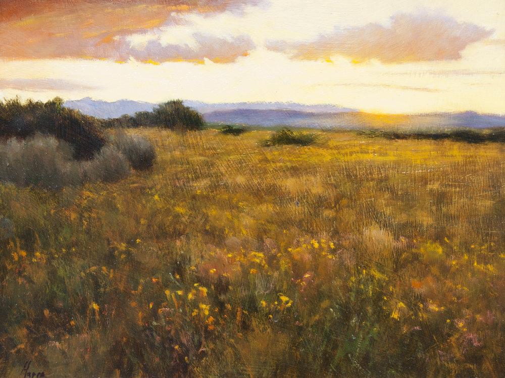 "Autumn Field • 11"" x 14"" • Oil"
