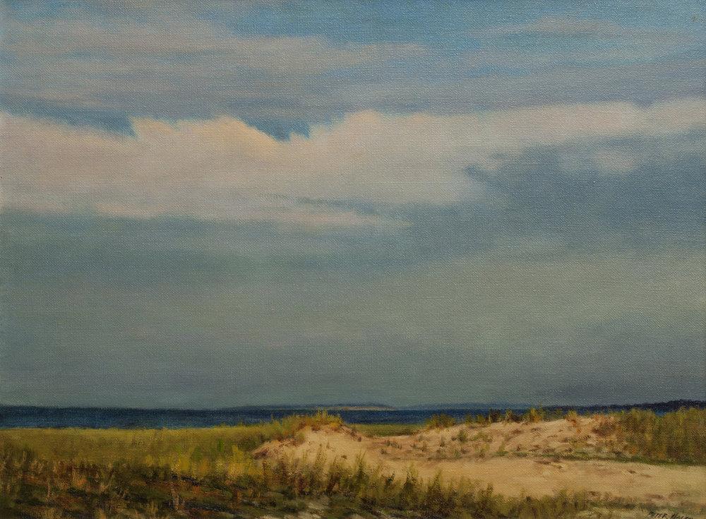 "Dunes Along the Coast • 18"" x 24"" • Oil"
