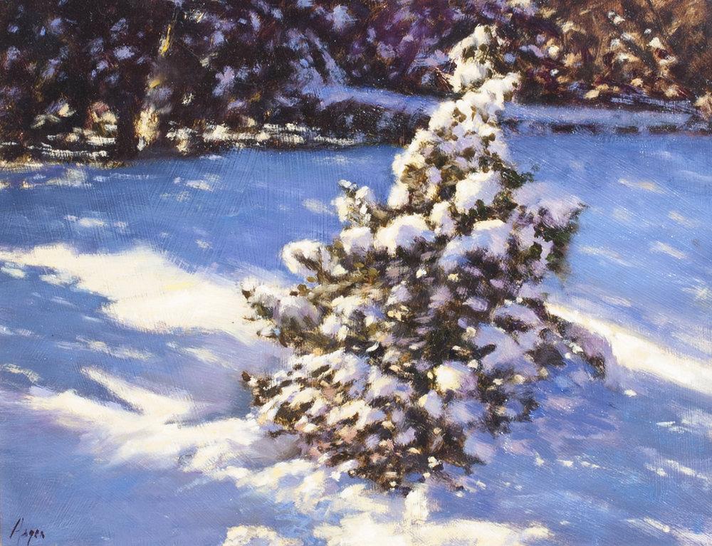 "Lone Winter Pine • 11"" x 14"" • Oil"