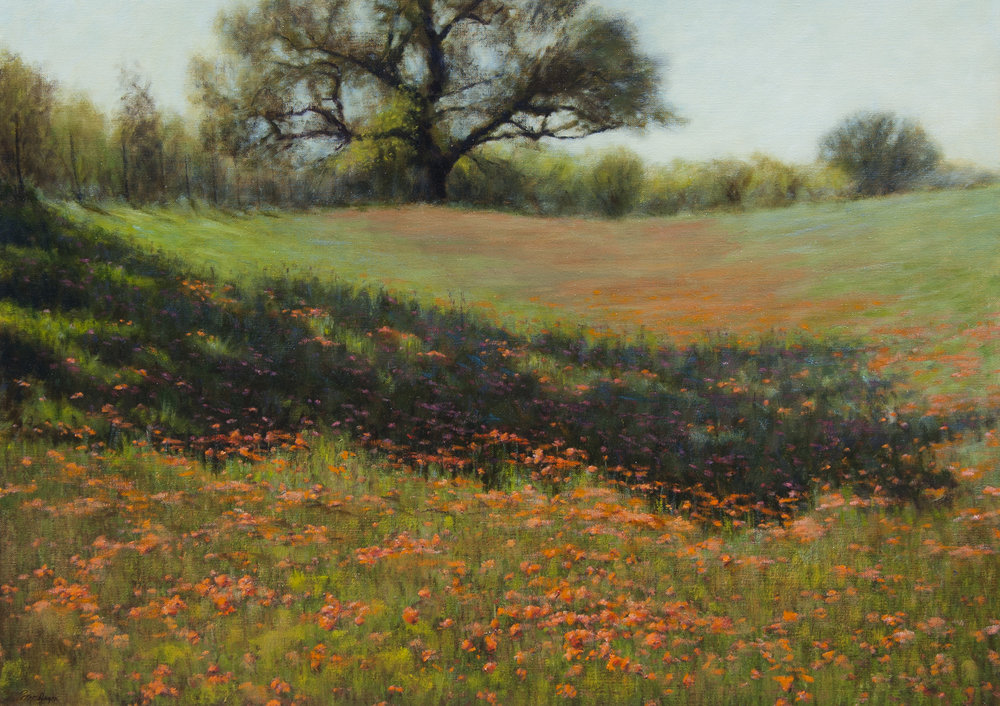 "Spring in the Hill Country • 30"" x 40"" • Oil"