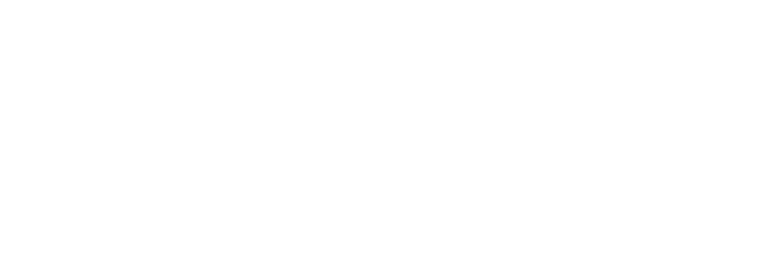 Palomo USA | Design Agency