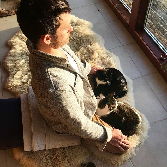 Meditation still proving challenging? Try two cats instead of one.  I'm really going to miss these two. They were refugees from the #tubbsfire that blasted thru Sonoma county last October. We've been fostering them while their family rebuilds their home, and scenes like this have grown more and more common as they've settled in. #yogicats !  #dontjustdosomethingsitthere #meditation #morethanasana #practiceloveandalliscoming