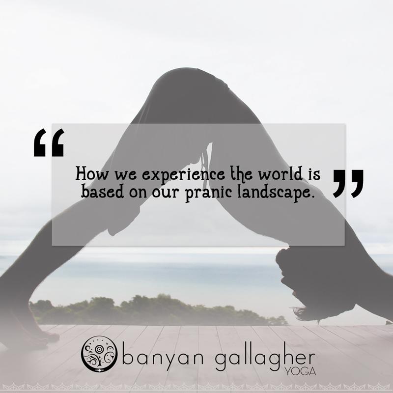 pranic-landscape-banyan-gallagher.jpg
