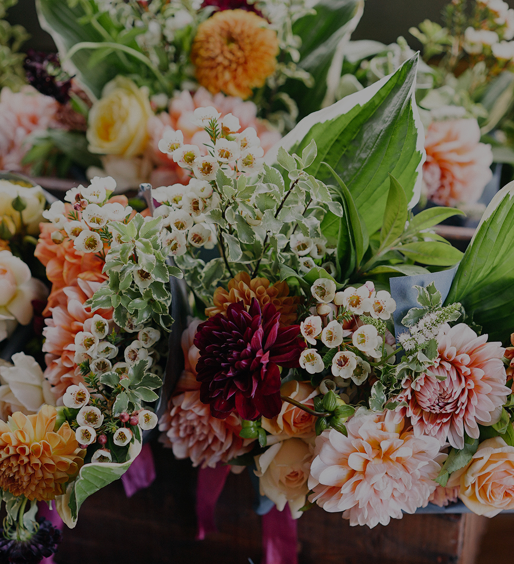 Flower Search - Search this extensive flower library to find your perfect floral solution.