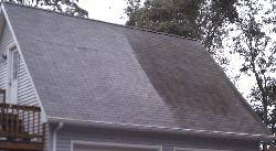 partial-cleaned-roof.png