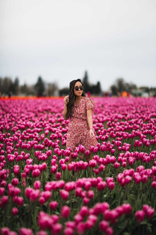 Tuyet_Tulips2018-19.jpg