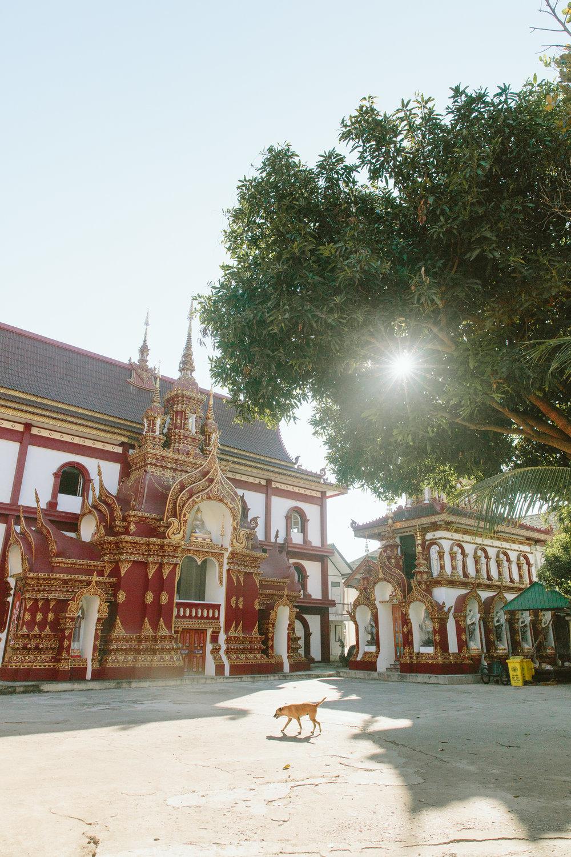 #AlohaSoutheastAsia_ChiangMai-18.jpg