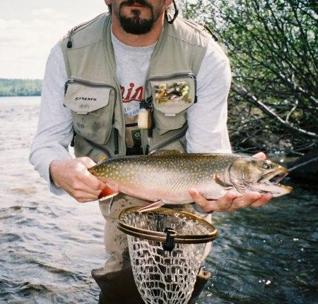 fish25.jpg