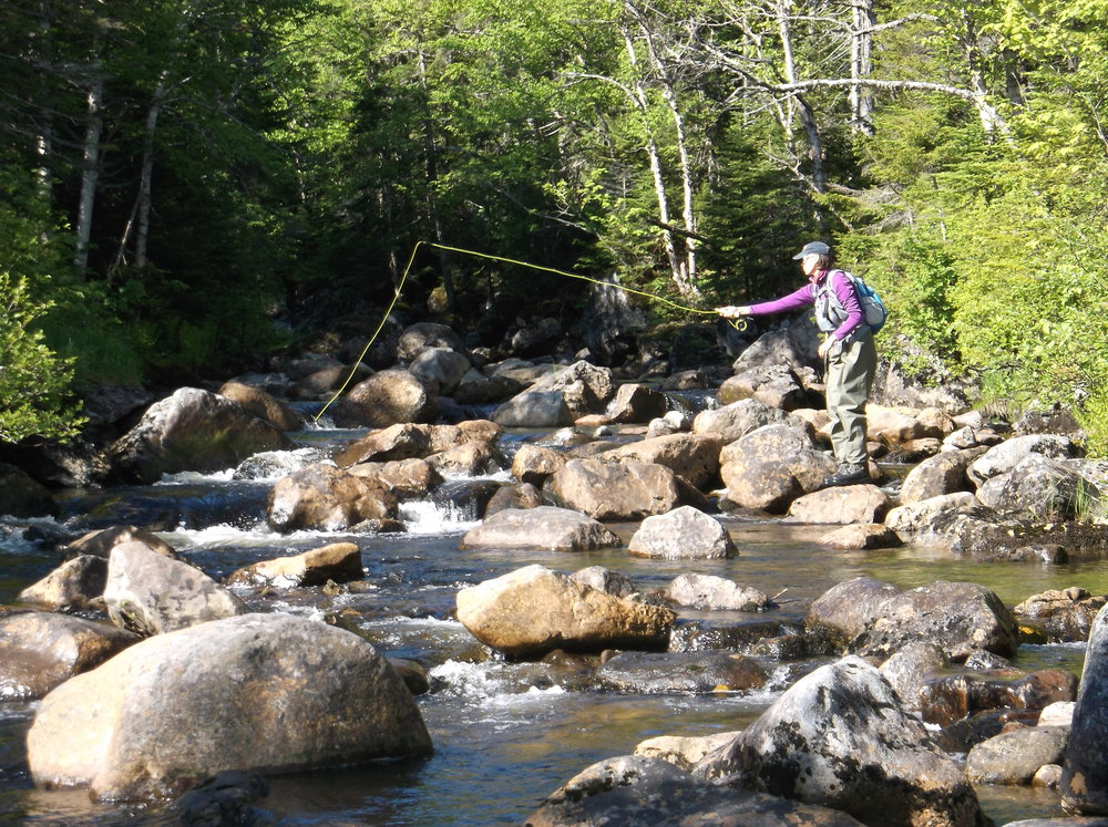 stream fishing  women's retreat, brook trout, flyfishing.jpg