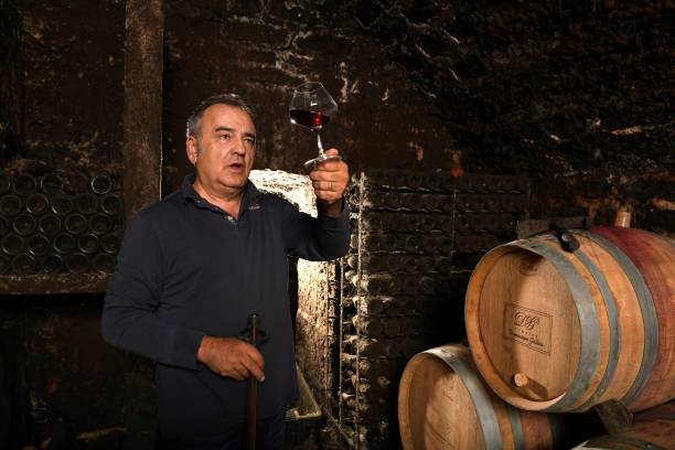 winemaker-dominique-gallois-poses-in-his-cellar-on-october-11-2017-in-picture-id862695156.jpeg