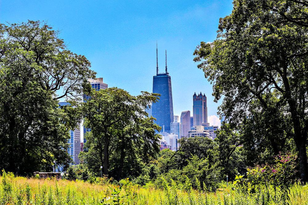 Lincoln-Park.jpg