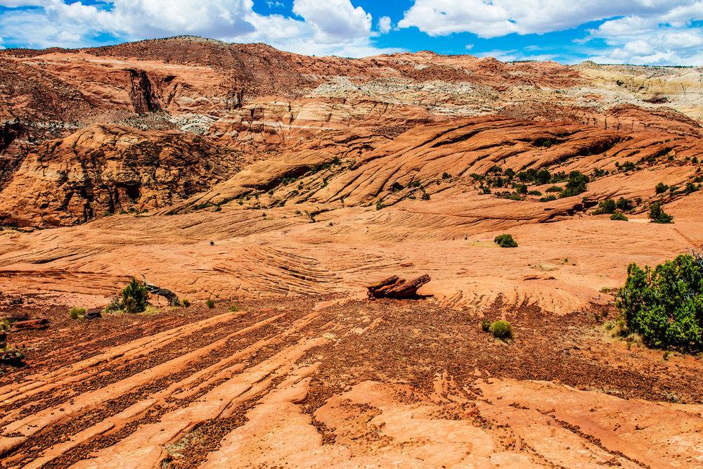 Snow-Canyon-Sand-Dune2.jpg