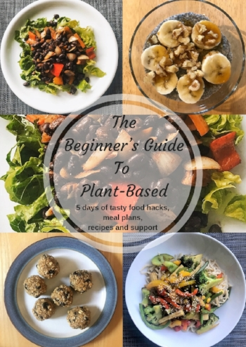 Beginner's guide front cover.jpg