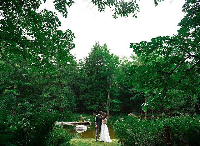 Beautiful Couple in Maine's Timeless Beauty 🌲 #weddingday #weddingdress #weddingphotography #soulful #classic #timeless #lovebylunasolo