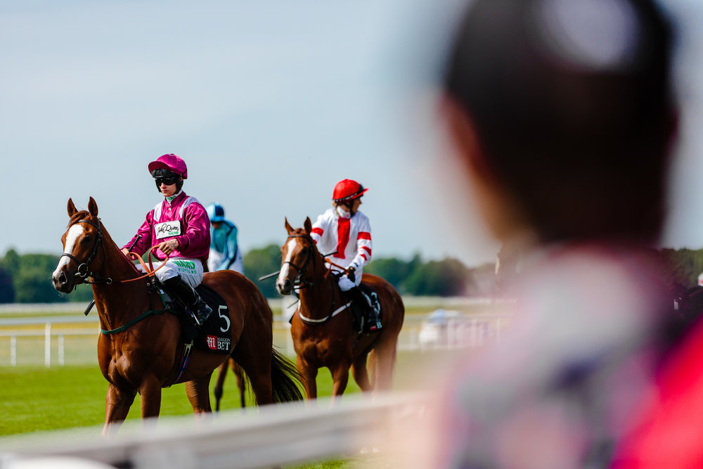 York Races - Chris Kendall Photography-9150.jpg
