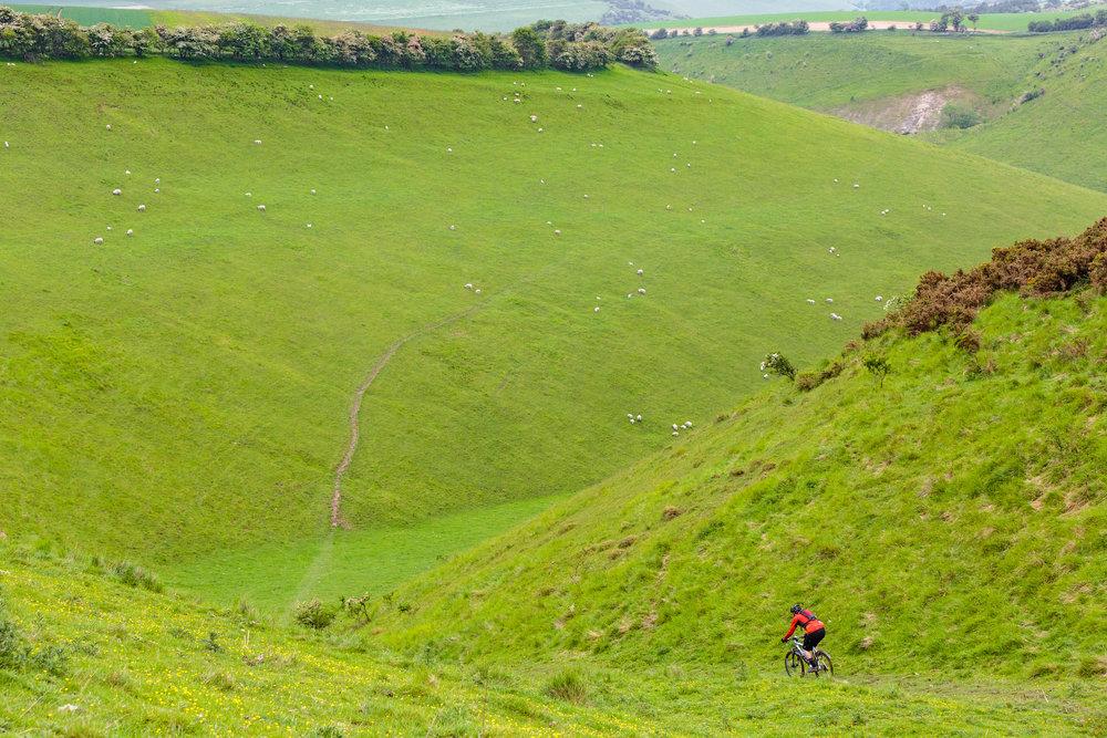 Yorkshire Mountain Bike Marathon - Chris Kendall Photography-0949.jpg