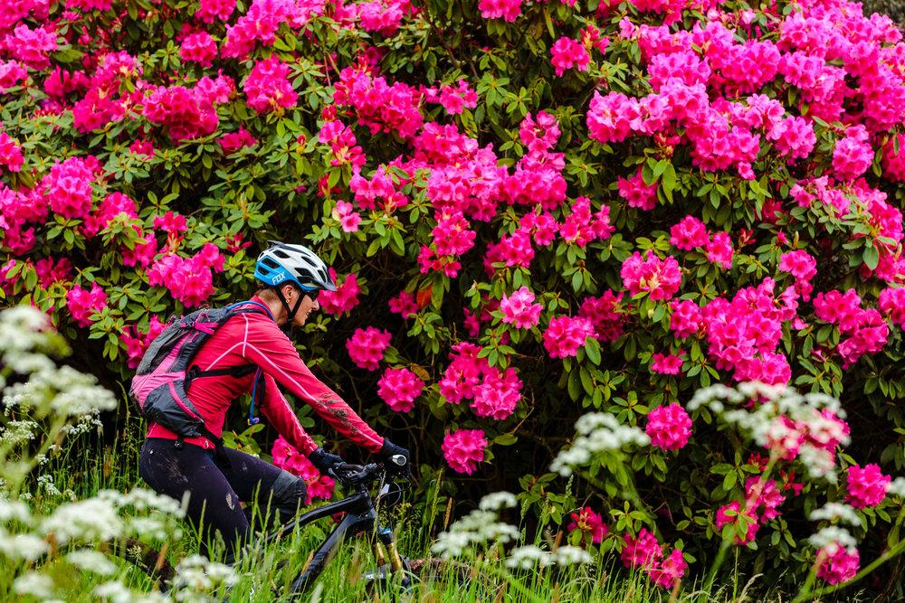 Yorkshire Mountain Bike Marathon - Chris Kendall Photography-1215.jpg