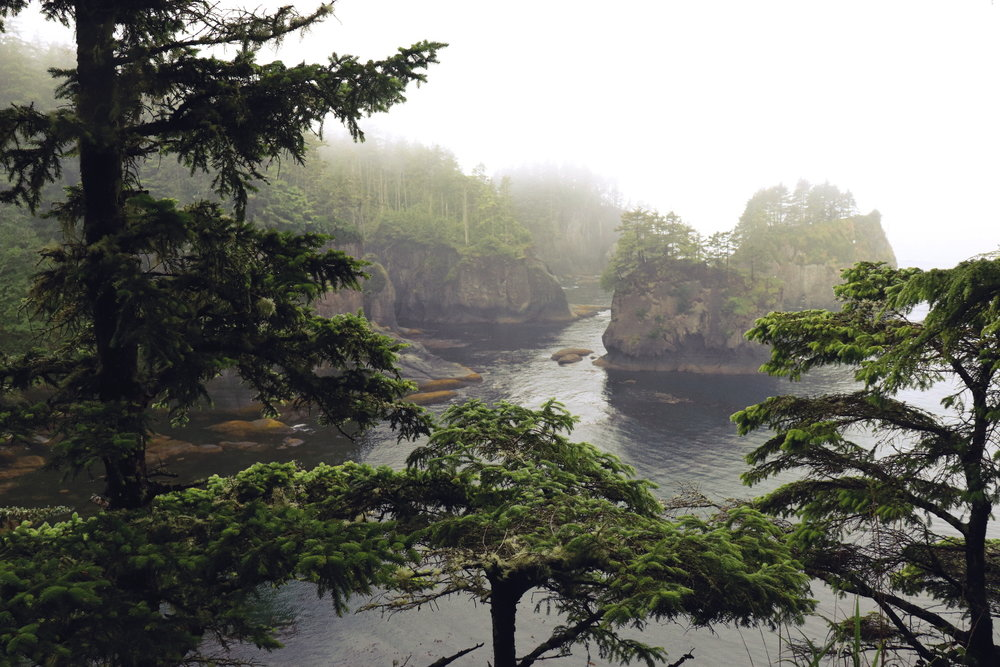 Cape Flattery WA Beautiful blogs to read, best blogs, blogs to read about life, blogs about lifestyle, read personal blogs, interesting personal blogs, natural living ideas, natural living blogs, life in washington state, what it's like living in washington state, washington state bloggers, washington state travel blog, inspiring blogs to follow, inspiring bloggers, inspiring bloggers on instagram, best personal life blogs