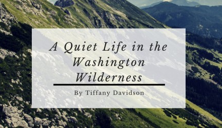 Living in the wilderness, Living off grid, Homesteading bloggers, Off grid living, Homesteading blogs, Live in the woods, Leave city for country, Moving to the country blog, Make money online, off grid living washington state,  Make money from home, Work from home, Back to the land, How to live off the grid, How to live off the grid in the woods, Best careers for living off the grid, Live rent free, Living debt free no mortgage, How to live without a mortgage or rent, Lifestyle design, Northeast  Washington state, How to live a simple life and be happy, Off grid homestead, Living off grid income, Full time income off grid, Most remote places lower 48, Largest wilderness areas lower 48, Farthest point from a road lower 48, Most rural towns in usa,, Most remote places in lower 48, Most isolated places to live, How to go off the grid with no money, Best places to live off grid  How to buy land with bad credit and no money down, Self sufficient homesteading, Self sufficient living, where to buy off grid land in america, where to live off grid in america, where to homestead in america, building off grid homestead, off the grid living ideas, best careers for living off the grid, off grid income, make a living off the land, make money living off the grid, make money on the homestead, off grid income ideas, full time income off grid, full-time income homesteading, make money online, digital nomad, digital peasant, make money blogging
