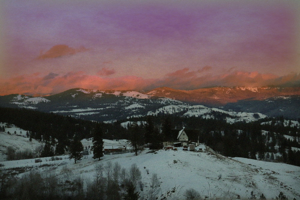 Tiffany Davidson Washington State Photography